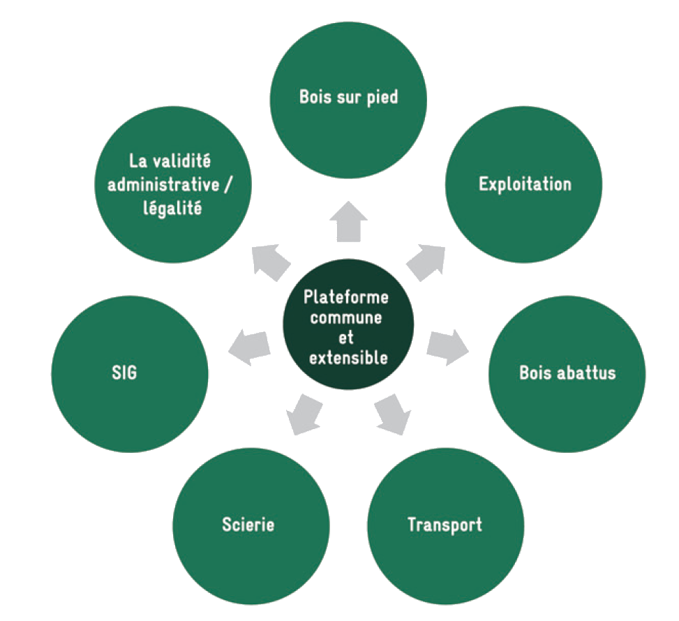 schema architecture du FLEGT